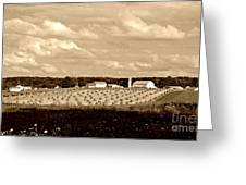 Amish Farm Greeting Card
