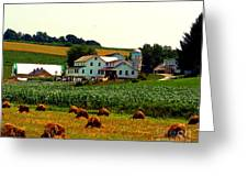 Amish Farm On Laundry Day Greeting Card