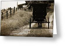 Amish Horse And Buggy Greeting Card
