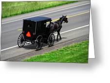 Amish Horse And Buggy In Ohio Greeting Card