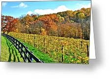 Amish Vinyard Two Greeting Card