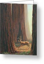 Sequoia Trees - Among The Giants Greeting Card