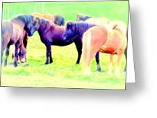 A Horse Most Of All Wanna Be One Among The Other Horses Greeting Card