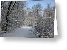 Amongst The Trees Greeting Card
