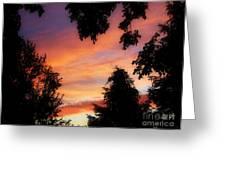 Ams 186a Greeting Card
