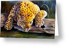 Amur Leopard  Spotted Something Greeting Card