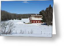 an American Frozen Pasture Greeting Card