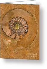 An Ancient Treasure I Greeting Card