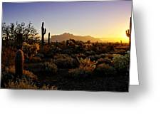 An Arizona Morning  Greeting Card