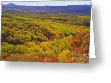 An Autumn Carpet Greeting Card