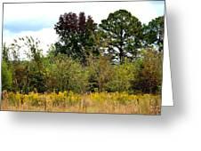 An Autumn Day In Alabama Greeting Card