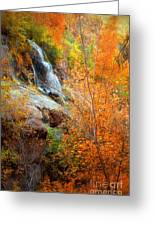 An Autumn Falls Greeting Card