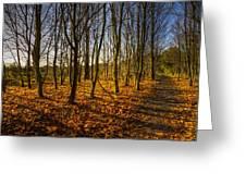 An Autumn Walk Greeting Card