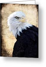 An Eagles Standpoint II Greeting Card