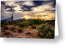An Evening In The Desert  Greeting Card
