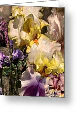 An Iris Surprise Right Greeting Card