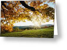 Sunset Over The Hill. Greeting Card