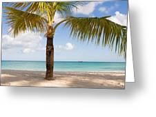 An Island View Greeting Card