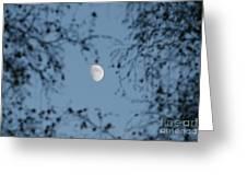 An October Moon Greeting Card