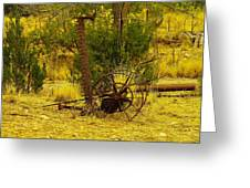 An Old Grass Cutter In Lincoln City New Mexico Greeting Card by Jeff Swan