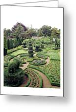 An Ornamental Garden Greeting Card