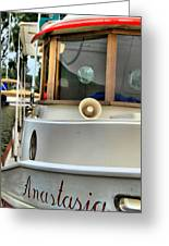 Anastasia Boating On Lake Erie Greeting Card