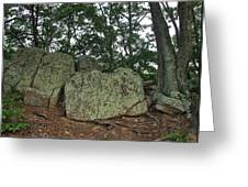 Ancient Boulders Greeting Card