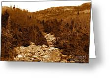 Ancient Brook - Sepia Tones Greeting Card
