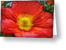 Ancient Flower 4 - Poppy Greeting Card