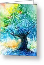 Ancient Olive Tree  Athenas Gift  Greeting Card