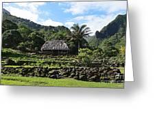 Ancient Taro Gardens In Kauai Greeting Card