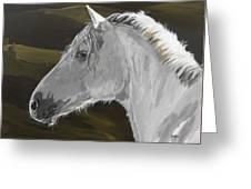 Andalusian Foal Greeting Card
