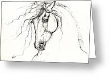 Andalusian Horse Drawing 04 11 2013 Greeting Card