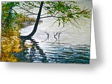 Anderson Lake In Fog One Greeting Card