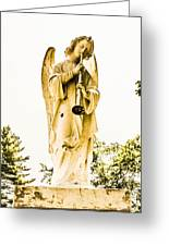 Angel From Dominican Greeting Card