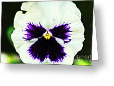 Angel In The Flower Greeting Card