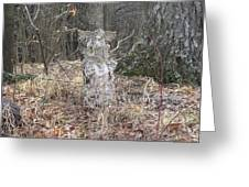Angel In The Woods Greeting Card