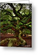 Angel Oak Tree Greeting Card