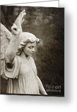 Angel Of Comfort Greeting Card by Terry Rowe