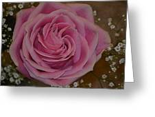 Angel's Pink Rose Greeting Card