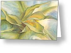 Angel's Pirouette Greeting Card