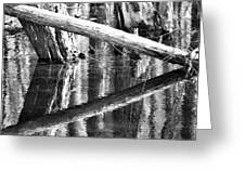 Angles And Reflections Greeting Card