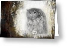 Angry Owl's Talons Greeting Card