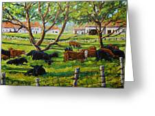 Angus Cows Under The Cool Shade By Prankearts Greeting Card