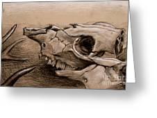 Animal Bones Greeting Card