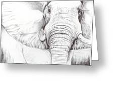 Animal Kingdom Series - Gentle Giant Greeting Card