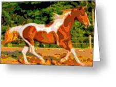 Animal Portrait The Horse Greeting Card