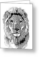 Animal Prints - Proud Lion - By Sharon Cummings Greeting Card