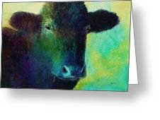 animals - cows- Black Cow Greeting Card
