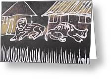 Animals Pose In The Remote Village. Greeting Card